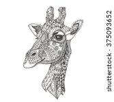 Giraffe. Hand Drawn Giraffe...