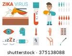 zika virus infographic... | Shutterstock .eps vector #375138088