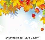 autumn leaves  raster  | Shutterstock . vector #37525294