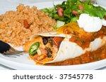 Gourmet Mexican Taco  Burrito...