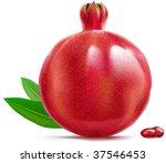 vector illustration of... | Shutterstock .eps vector #37546453