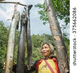 "Small photo of Kiulu Sabah Malaysia - Feb 12, 2016. Unidentified woman looking at freshwater eel or locally known as ""Sinsilog"" during fish harvesting season at Pahu Kiulu. Eel is abundance in Kiulu river."