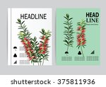 brochure flyer design layout... | Shutterstock .eps vector #375811936