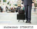 pilot with bags | Shutterstock . vector #375843715