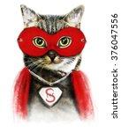 cat illustration superhero cat  ... | Shutterstock . vector #376047556