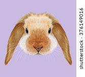 rabbit animal. illustrated...   Shutterstock . vector #376149016