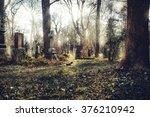 beauty of death | Shutterstock . vector #376210942