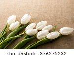 white tulip | Shutterstock . vector #376275232