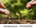 hands of a farmer watering and... | Shutterstock . vector #376322962