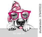 portrait of a basset hound in... | Shutterstock .eps vector #376435312