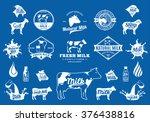 vector milk logo  splashes and... | Shutterstock .eps vector #376438816