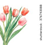 spring background  with ... | Shutterstock . vector #376743088