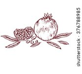 a pomegranate piece with... | Shutterstock .eps vector #376788985