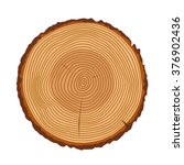 tree rings  tree trunk rings... | Shutterstock .eps vector #376902436