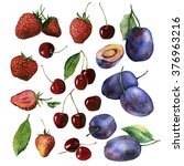 watercolor fruit berry set of... | Shutterstock . vector #376963216