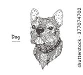 hand drawn dog  with ethnic... | Shutterstock .eps vector #377074702