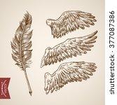 angel bird wings feather...   Shutterstock .eps vector #377087386