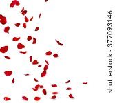 Stock photo rose petals fall to the floor isolated background d render 377093146
