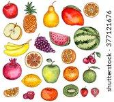 watercolor fruits set | Shutterstock . vector #377121676