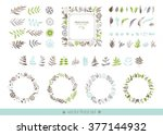 floral hand drawn collection.... | Shutterstock .eps vector #377144932
