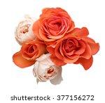 bouquet of roses  | Shutterstock . vector #377156272