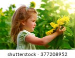 girl in the sunflowers field  | Shutterstock . vector #377208952