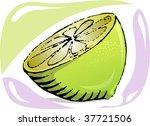 illustration of sweet fruit of... | Shutterstock .eps vector #37721506