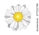 3d vector illustration... | Shutterstock .eps vector #377221708