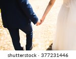 wedding theme  holding hands... | Shutterstock . vector #377231446