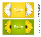 bright spring banners design.... | Shutterstock .eps vector #377248288