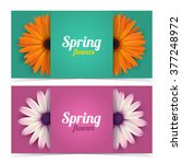 bright spring banners design.... | Shutterstock .eps vector #377248972