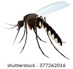 vector illustration of a... | Shutterstock .eps vector #377262016