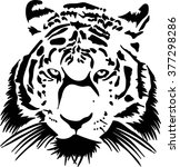 tiger angry | Shutterstock .eps vector #377298286