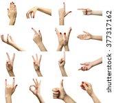 set of female hands gestures ... | Shutterstock . vector #377317162