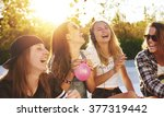 portrait of best friends... | Shutterstock . vector #377319442