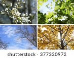 four seasons collage  several... | Shutterstock . vector #377320972