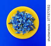 Blue Flowers On Yellow Plate....
