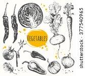 vector illustration with sketch ...   Shutterstock .eps vector #377540965