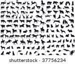 animals vector | Shutterstock .eps vector #37756234
