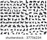 animals vector   Shutterstock .eps vector #37756234