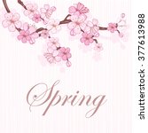 cherry blossom   branch with... | Shutterstock .eps vector #377613988