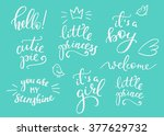 lettering photography family... | Shutterstock .eps vector #377629732