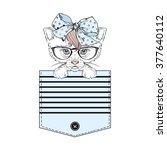 lovely kitty girl in stripy... | Shutterstock .eps vector #377640112