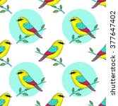 vector cute colorful canary... | Shutterstock .eps vector #377647402