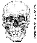 Laughing Skull   Hand Drawn...