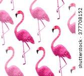 pink flamingo watercolor print | Shutterstock . vector #377708152