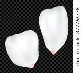 two big vector roses petals... | Shutterstock .eps vector #377766778