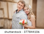 bride and groom wedding... | Shutterstock . vector #377844106