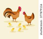bird family chicken  rooster... | Shutterstock .eps vector #377879116