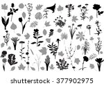 66 silhouettes of flowers and... | Shutterstock .eps vector #377902975